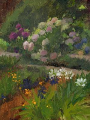 Gamble Gardens Hydrangeas